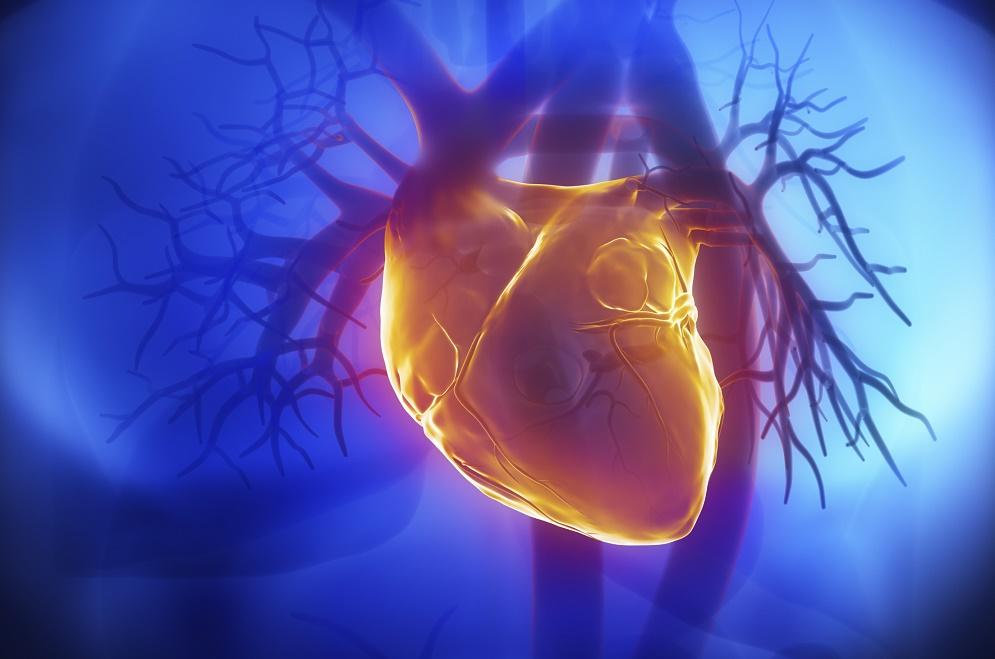 پنج شاخص سلامتی برای پیش بینی ریسک بیماری های قلبی عروقی کافی است