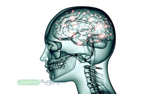 تکنولوژی جدید نمودار سیم کشی مغز را خواهد ساخت.