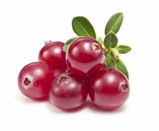 مکمل دارویی قره قاط، کرَن بری یا توت خرس (Cranberry)